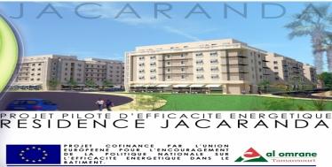 Ksour Jacaranda